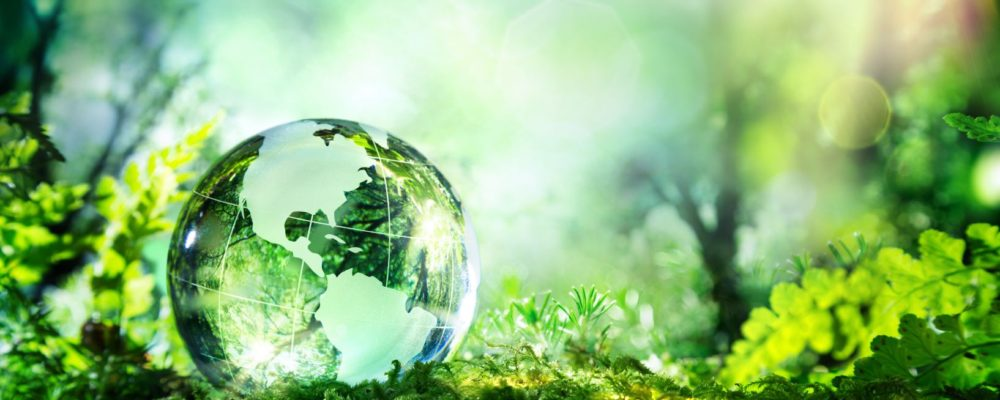 The Green Finance Strategy